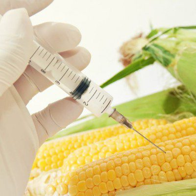 Non-GMO ingredients have not been genetically modified.