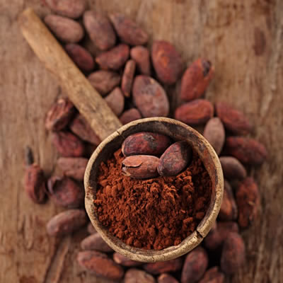 scoop of dutched cocoa powder