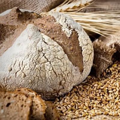 cultured wheat