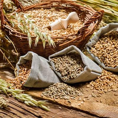 insoluble fiber grains