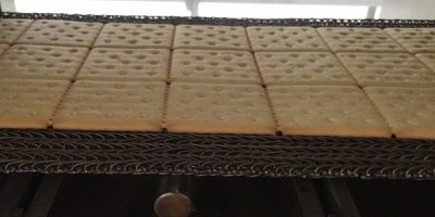 Crackers baking on a conveyor belt in the oven