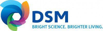 DSM_MasterLogo