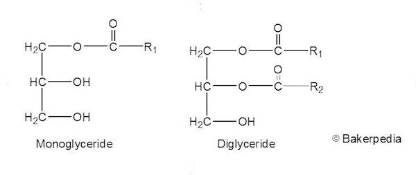 Monoanddiglycerides1