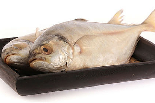 Fish allergy food safety bakerpedia for Allergic reaction to fish