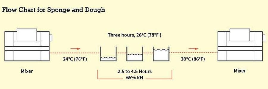 Sponge and Dough flow chart
