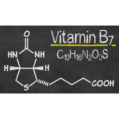 Vitamin B7 chemical structure