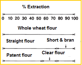 The relation of whole wheat flour, straight grade flour, patent flour and clear flour