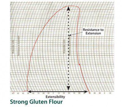 strong gluten flour-extensograph