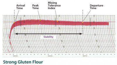 Figure 1: Farinograph curve of strong gluten flour.