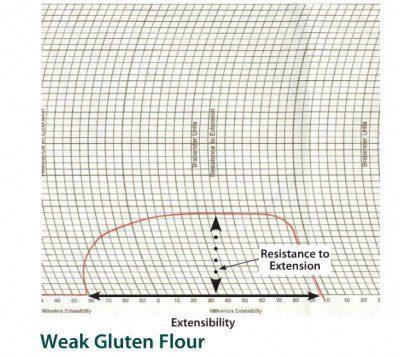 Weak gluten flour-extensograph