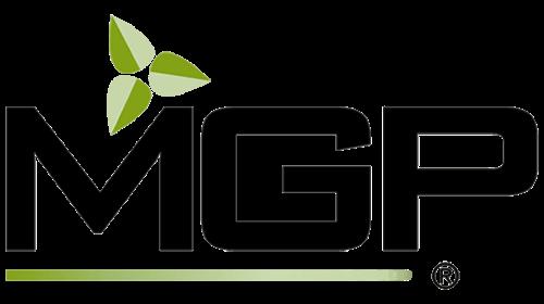 sponsor-logo-template-mgp-500x280