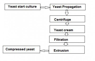 Compressed yeast production.